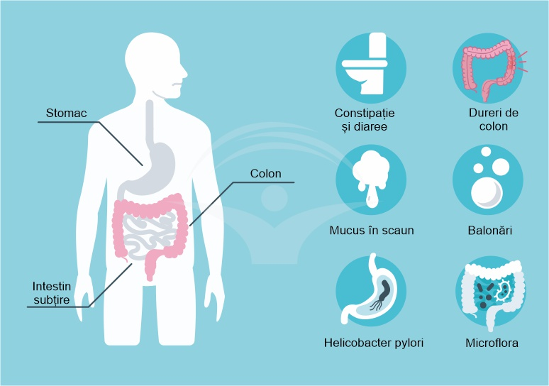 lista medicamente colon iritabil)